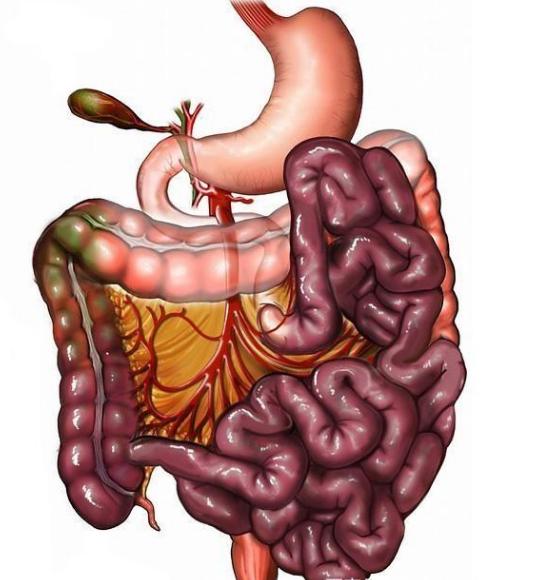 """肠息肉者,排便出现3个异常,十有八九息肉已变成""""癌"""""""